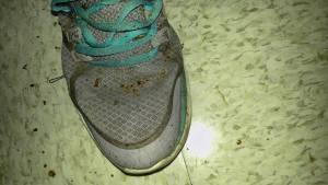 Zapatillas con chinches